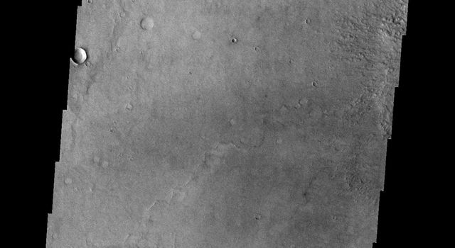 This image from NASA's Mars Odyssey spacecraft shows a group of craters on Mars that resemble a muppet.