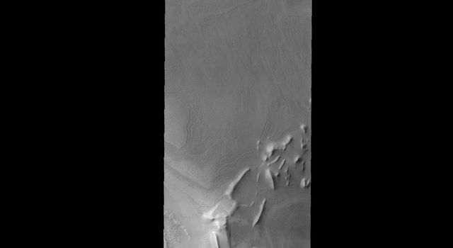 The linear ridges in this image captured by NASA's 2001 Mars Odyssey spacecraft are located near the south polar cap.