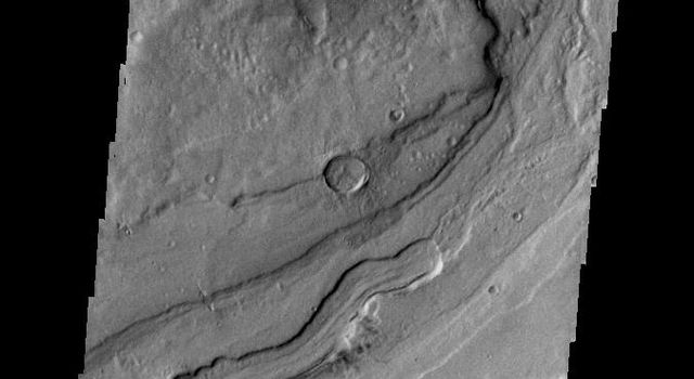 The complex channel in this image is a small section of Reull Vallis as seen by NASA's 2001 Mars Odyssey spacecraft.
