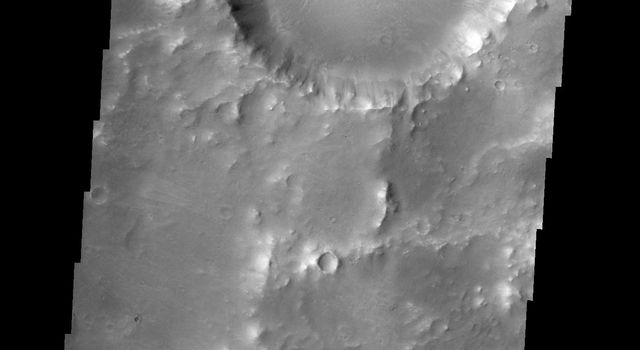 The dunes in this image are located on the floor of Herschel Crater as seen by NASA's 2001 Mars Odyssey spacecraft.