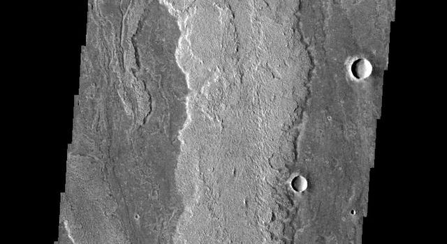 This image from NASA's 2001 Mars Odyssey spacecraft shows part of the extensive lava flows that make up Daedalia Planum.