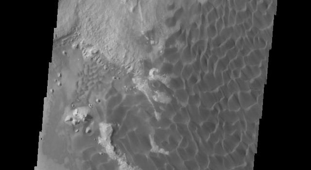 This image captured by NASA's 2001 Mars Odyssey spacecraft shows the dunes darker than their surroundings due to cooler temperature.