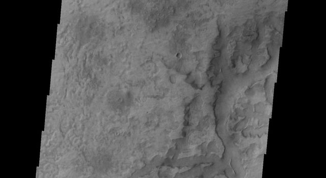 This image from NASA's 2001 Mars Odyssey spacecraft shows some of the depressions in the material that fills Asimov Crater.