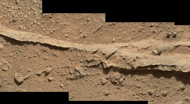This mosaic of four images from NASA's Mars rover Curiosity shows detailed texture in a ridge that stands higher than surrounding rock. The rock is at a location called 'Darwin,' inside Gale Crater.