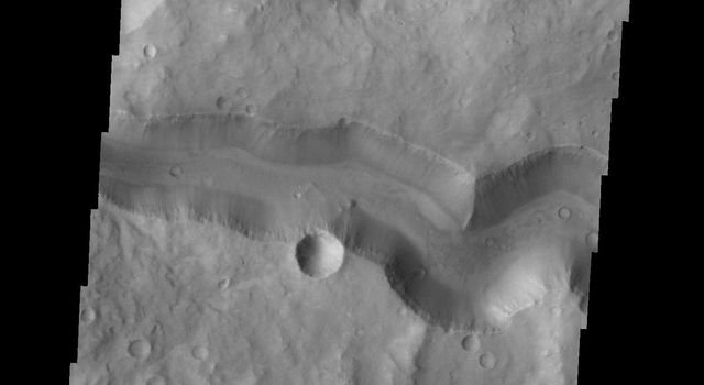 This image from NASA's 2001 Mars Odyssey spacecraft shows Tinto Vallis (middle of image) and Palos Crater (top of image).
