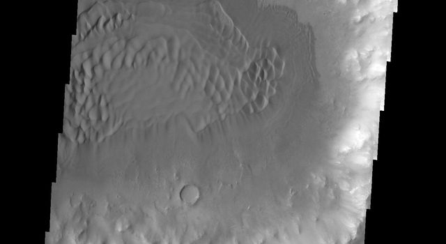 This image shows dunes in and around a crater located on the floor of the much larger Herschel Crater as seen by NASA's 2001 Mars Odyssey spacecraft.