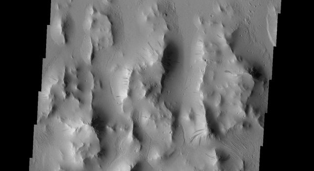 Dark slope streaks are common throughout Lycus Sulci as seen by NASA's 2001 Mars Odyssey spacecraft.