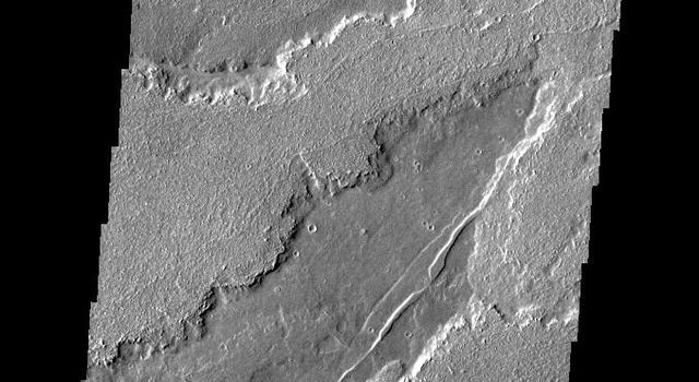 This image captured by NASA's 2001 Mars Odyssey spacecraft shows part of the extensive field of lava flows that make up Daedalia Planum.