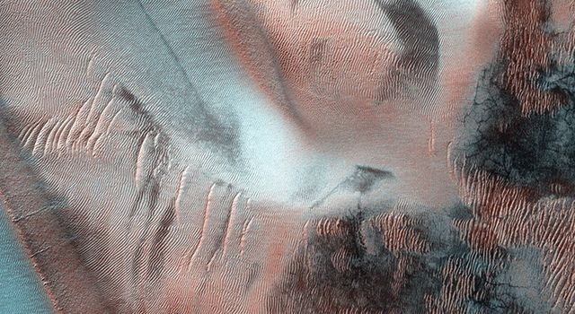 Richardson Crater is home to this sea of sand dunes. It was fall in the Southern hemisphere when NASA's MRO acquired this image of the dunes frosted with the first bit of carbon dioxide ice condensed from the atmosphere.