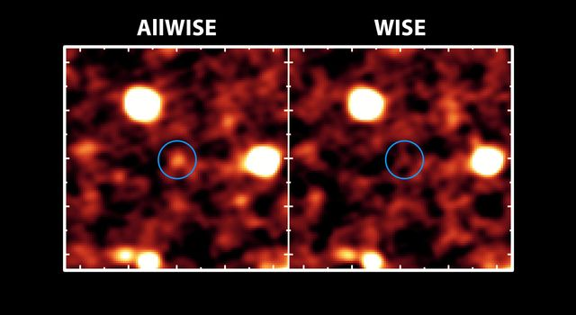 The new AllWISE catalog will bring distant galaxies that were once invisible out of hiding, as illustrated in this image. At right, a portion of the sky available before the AllWISE project; at left, the same part of the sky in a new AllWISE image.