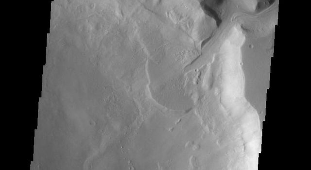 This image shows a delta deposit where a tributary channel enters Ismenius Cavus in Mamers Valles as seen by NASA's 2001 Mars Odyssey spacecraft.