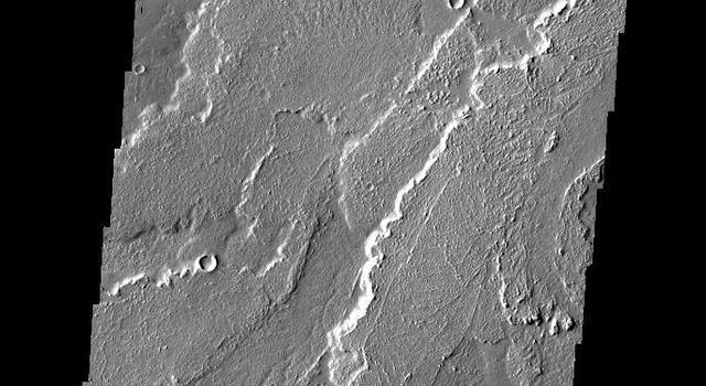 This image from NASA's 2001 Mars Odyssey spacecraft shows a small portion of the lava flows that comprise Daedalia Planum.