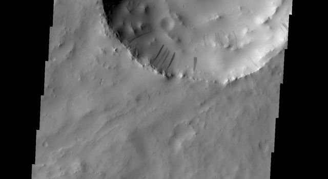 Dark slope streaks mark the inner rim of this unnamed crater in Arabia Terra as seen by NASA's 2001 Mars Odyssey spacecraft.