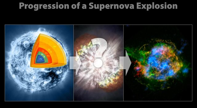 Evolution of a Supernova