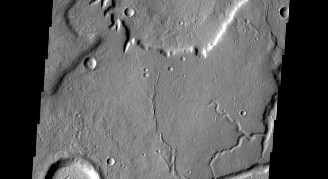 The crater gullies, channels and fractures in this image taken by by NASA's 2001 Mars Odyssey spacecraft are located on the eastern margin of Tempe Terra.