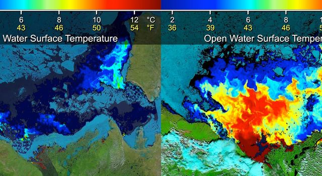 Beaufort Sea surface temperatures where Canada's Mackenzie River discharges into the Arctic Ocean, measured by NASA's MODIS instrument; warm river waters had broken through a shoreline sea ice barrier to enhance sea ice melt.