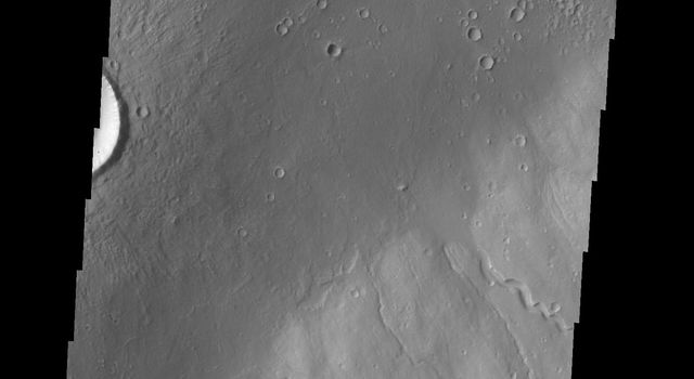 Multiple channels dissect the northwestern flank of Hecates Tholus in this image as seen by NASA's 2001 Mars Odyssey spacecraft.