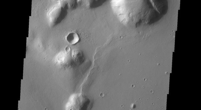 The hills in this image seen by NASA's 2001 Mars Odyssey spacecraft are part of Tartarus Colles. Several of the hills have dark slope streaks, believed to be formed by downslope removal of dust revealing the darker rock beneath.