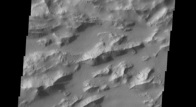 This image captured by NASA's 2001 Mars Odyssey spacecraft shows a portion of Lycus Sulci, a complex region of ridges located on the northern side of Olympus Mons. The term sulci means subparallel furrows and ridges.