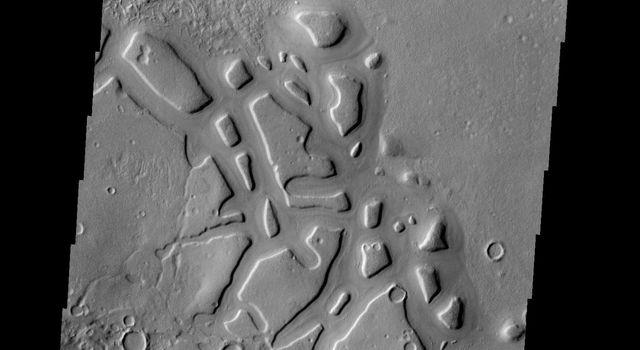 Regions of mesas and channels are termed chaos. This region on the margin of Terra Sabaea has several areas of chaos, as shown in this image from NASA's 2001 Mars Odyssey spacecraft.