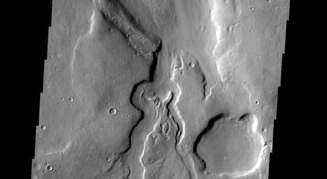 The unnamed channels in this image captured by NASA's 2001 Mars Odyssey spacecraft are located in northern Arabia Terra.