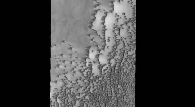 This image captured by NASA's 2001 Mars Odyssey spacecraft shows part of Siton Undae, one of the dune fields near the north polar cap.