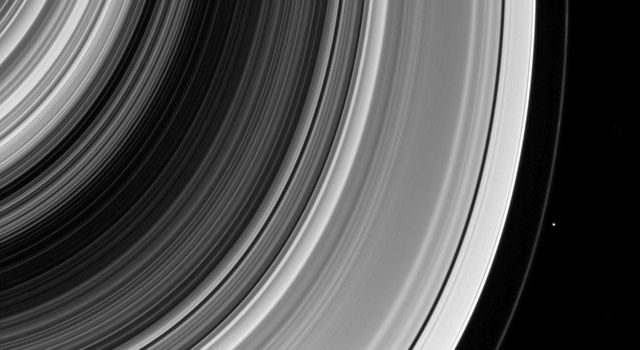 The F ring shepherd Pandora is captured here by NASA's Cassini spacecraft along with other well-known examples of Saturn's moons shaping the rings.