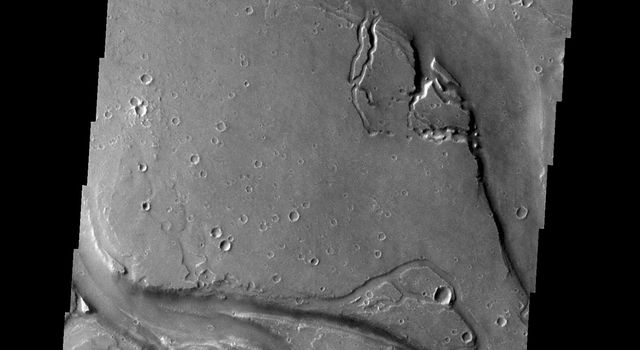 The channels in this image from NASA's 2001 Mars Odyssey spacecraft are part of Granicus Valles. Granicus Valles is located just west of the Elysium Mons Volcanic Complex and was liked formed by the flow of lava rather than water.