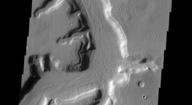 The channels in this image captured by NASA's 2001 Mars Odyssey spacecraft are part of a complex valley system called Mamers Valles. Mamers Valles is located on the northern margin of Arabia Terra.