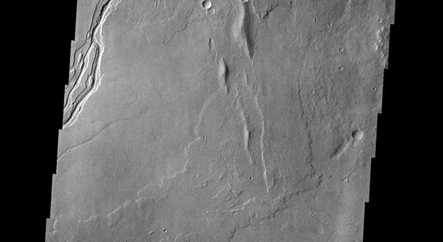 The channel at the very top of this image captured by NASA's 2001 Mars Odyssey spacecraft is Olympica Fossae. That and the rest of the channels in this image are likely lava channels.