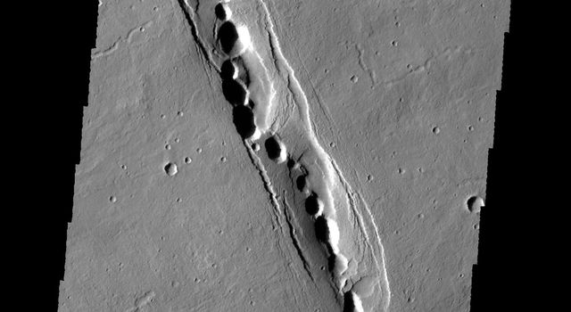 The linear feature in this image captured by NASA's 2001 Mars Odyssey spacecraft is part of Cyane Fossae. The circular collapse features are bounded by linear faults.