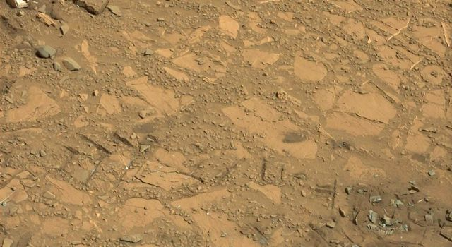 This Aug. 12, 2012, image from the Mastcam on NASA's Curiosity Mars rover shows an outcrop that includes the 'Bonanza King' rock under consideration as a drilling target. Raised ridges on the flat rocks are visible at right.