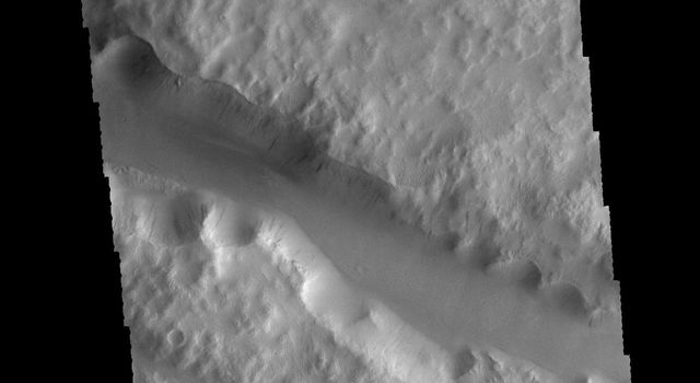 This image captured by NASA's 2001 Mars Odyssey spacecraft shows a portion of Labou Vallis.