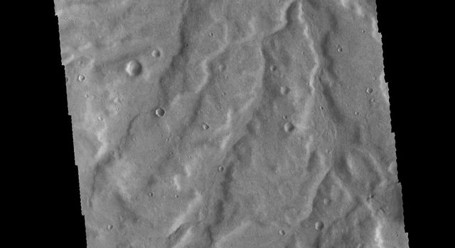 The unnamed channels in this image captured by NASA's 2001 Mars Odyssey spacecraft are located in Terra Cimmeria.