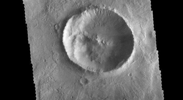 Located on the floor of an unnamed crater in Terra Sirenum, the crater in the center of the this image captured by NASA's 2001 Mars Odyssey spacecraft has numerous gullies on the inner rim.