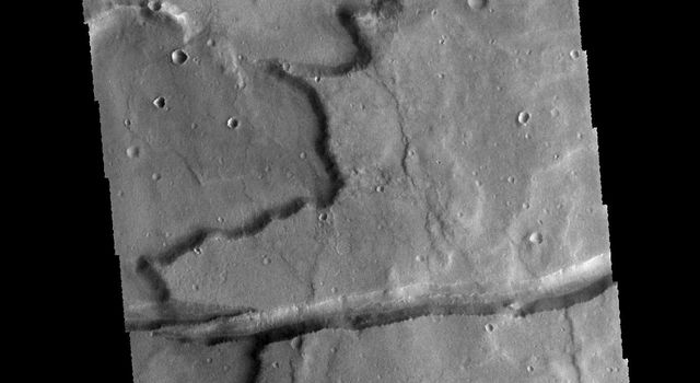 The linear depression in this image from NASA's 2001 Mars Odyssey spacecraft is a graben. The graben in this area of Mars are called Sirenum Fossae.