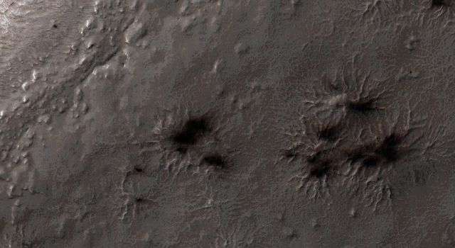This was the first image to be acquired by NASA's Mars Reconnaissance Orbiter after the sun rose on Inca City, marking the end to polar night. A few fans are visible emerging from the araneiforms.