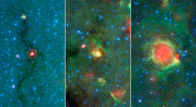Evolution of a Massive Star