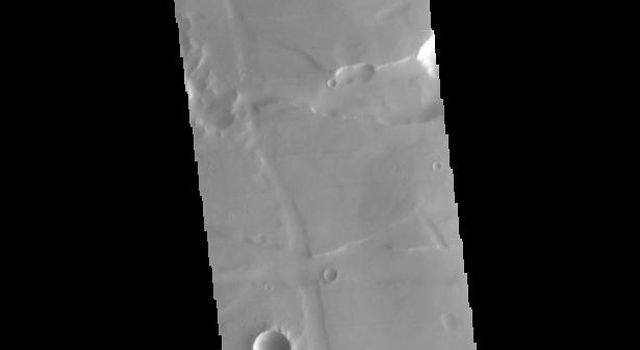 This image captured by NASA's 2001 Mars Odyssey spacecraft crosses both Tithonium and Ius Chasma.