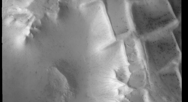 The intersecting ridges in this image from NASA's 2001 Mars Odyssey spacecraft are part of Angustus Labyrinthus, informally called Inca City.