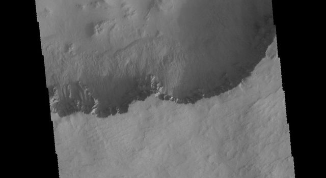 Numerous gullies are visible in this image captured by NASA's 2001 Mars Odyssey spacecraft of Asimov Crater.