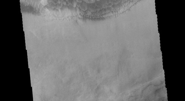 This image captured by NASA's 2001 Mars Odyssey spacecraft shows multiple dune fields cover the floor of Hooke Crater, located on the northern margin of Argyre Planitia.