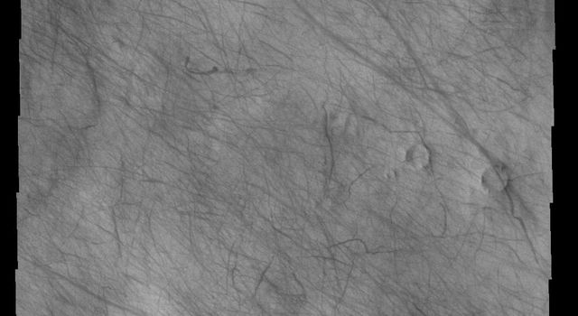 This image captured by NASA's 2001 Mars Odyssey spacecraft shows a multitude of dust devil tracks on Mars. The dark linear marks record where the dust devil was in contact with the surface and removed dust revealing the darker surface below.