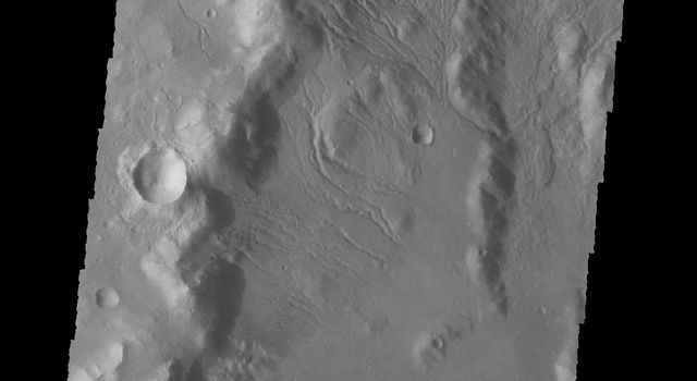 This image from NASA's 2001 Mars Odyssey spacecraft shows numerous gullies dissect the rim of this unnamed crater in Terra Sirenum.