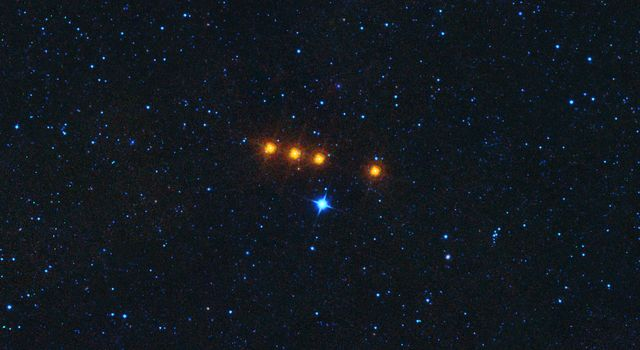 Asteroid Euphrosyne as Seen by WISE