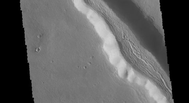 This image captured by NASA's 2001 Mars Odyssey spacecraft shows a number of unnamed channels located on the northeastern margin of Terra Sabaea.