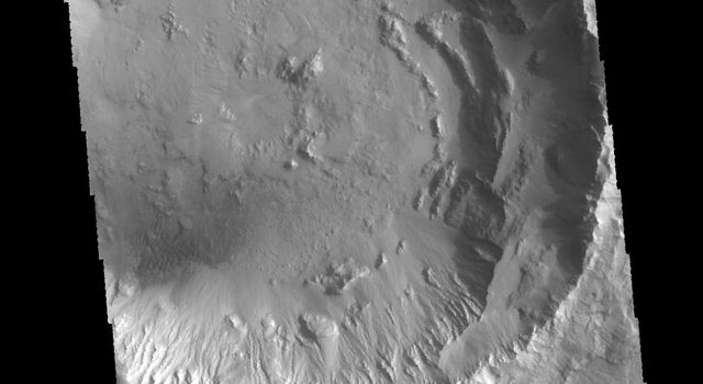 This image from NASA's 2001 Mars Odyssey spacecraft shows an unnamed crater in Chryse Planitia. There are several concentric ridges visible on the right side of this image.