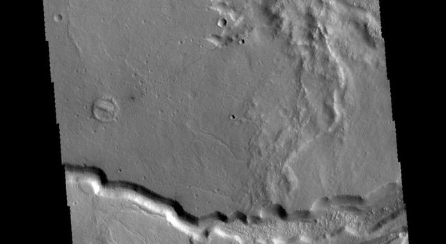 This image from NASA's 2001 Mars Odyssey spacecraft is located on the margin of Tempe Terra near Chryse Planitia. Several channels are visible as well as tectonic features.