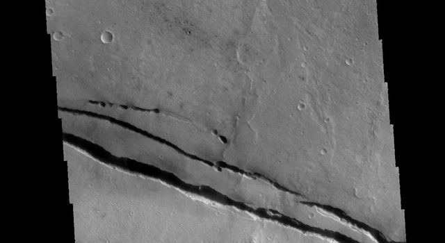This image captured by NASA's 2001 Mars Odyssey spacecraft shows Cerberus Fossae, a group of graben located near the southern part of Tartarus Montes.