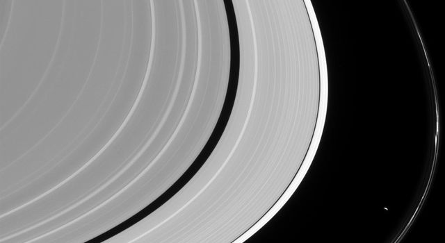 Most planetary rings appear to be shaped, at least in part, by moons orbiting their planets, but nowhere is that more evident than in Saturn's F ring as seen by NASA's Cassini spacecraft.